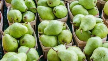 What Fruits And Vegetables Are In Season This Month?